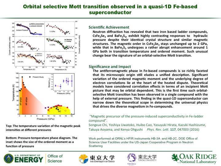 Orbital selective Mott transition observed in a quasi-1D Fe-based superconductor