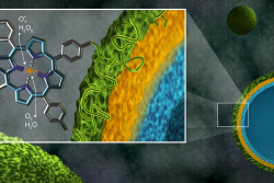 Shown as green spheres, microcapsules containing the polymer manganoporphyrin, a newly developed antioxidant (green), the natural antioxidant tannic acid (yellow), and a binding material (blue), can be analyzed for stability and efficiency with neutrons. Measuring the thickness of the capsule shells in the presence of oxidants could help researchers adapt this polymer for a host of biomedical applications. (Image credit: ORNL/Jill Hemman)