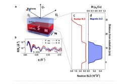 Symmetry Mismatch Controls Magnetism in a Ferroelastic Film