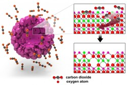Left: The surface of a lithium-rich cathode particle is treated with carbon dioxide gas. Right: Carbon dioxide gas molecules extract oxygen atoms from the lattice of the lithium-rich cathode particle to create oxygen vacancies at the surface. Credit: Laboratory for Energy Storage and Conversion, UC San Diego.