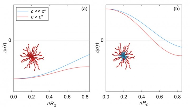 The dependence of scattering contrast on concentration of star polymers