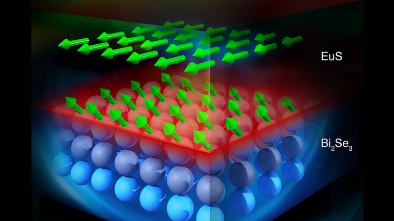 Illustration showing structure of Bi2Se3-EuS bilayer film. On the top layer the depth profile of the magnetization vector distribution of Eu atoms is represented by green arrows. The light purple spheres represent Bi2Se3 interfacial layers magnetized in close proximity to EuS FMI. (Image credit: ORNL/Jill Hemman)