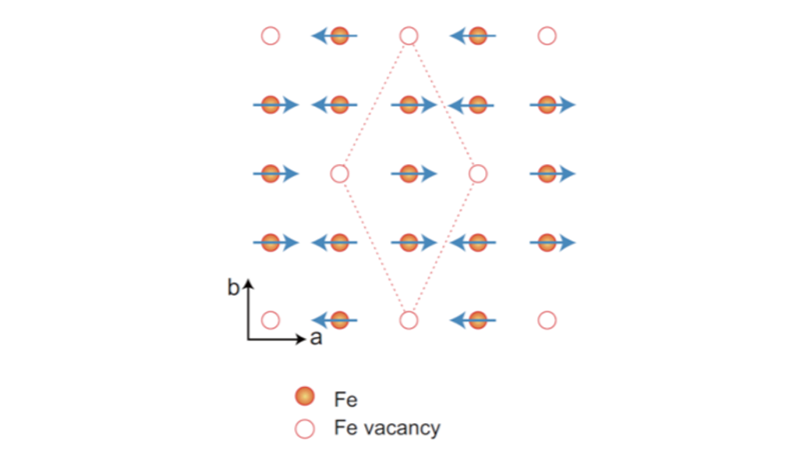 Stripe-type magnetic order and rhombus iron vacancy order