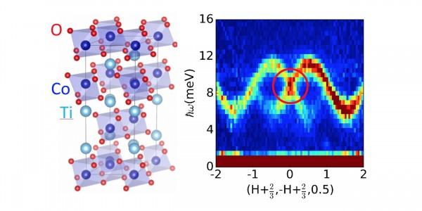 Dirac Magnon in a Honeycomb Quantum XY Magnet CoTiO3