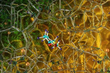 Illustration of the optimized zeolite catalyst (NbAlS-1), which enables a highly efficient chemical reaction to create butene, a renewable source of energy, without expending high amounts of energy for the conversion. Credit: ORNL/Jill Hemman
