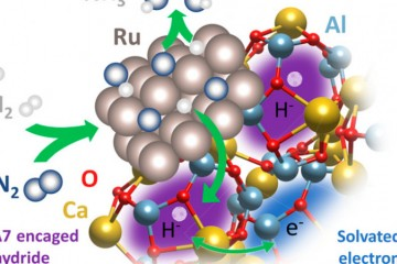 Image reprinted with permission from Kammert, J. et al. Nature of Reactive Hydrogen for Ammonia Synt